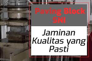paving block sni
